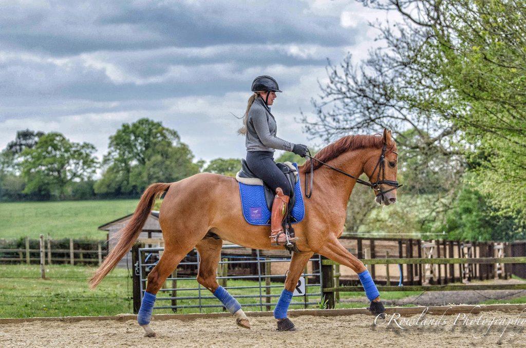 Jessica Gale - International Dressage Rider